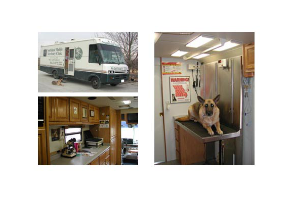 3 pictures; View outside the mobile vet; Our lab desk; A German Shepard on our exam table.