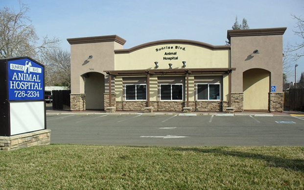The outside of our veterinary hospital in Citrus Heights, CA