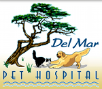 Del Mar Pet Hospital