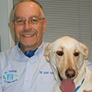 Dr. Yarnell with his yellow lab
