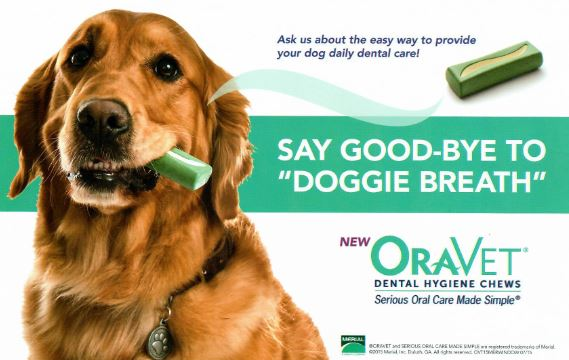 Image result for oravet chews