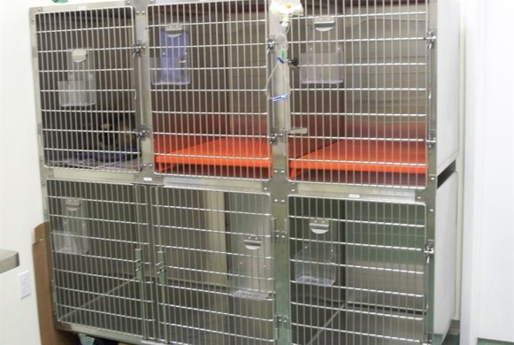Hospitalized patient cages