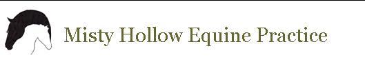 MHEP Logo