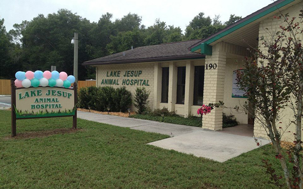 The outside of our veterinary hospital in Winter Springs, FL