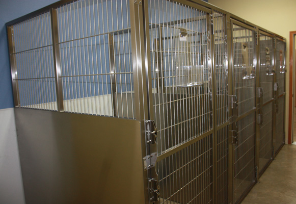 Canine Kennel Suites