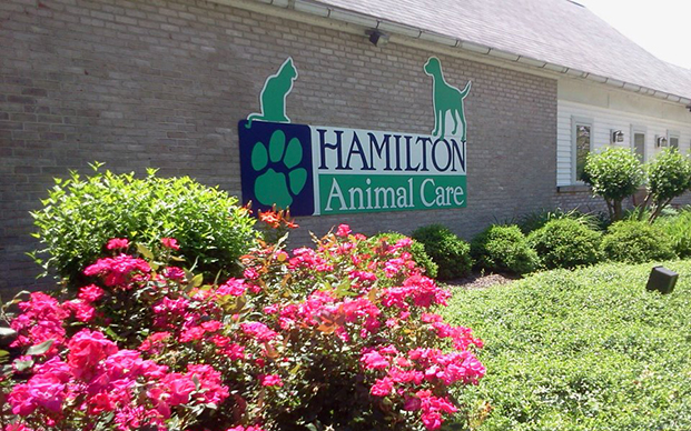 The outside of our veterinary hospital in Wescosville, PA