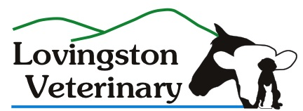 Lovingston Veterinary Hospital