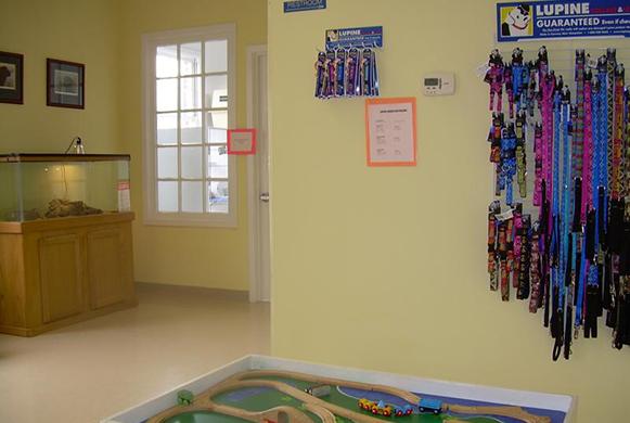 Lobby of Reynolda Veterinary Hospital