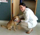 We're a friendly, knowledgable group of cat and dog vets.