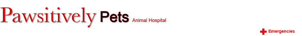 Pawsitively Pets Animal Hospital logo