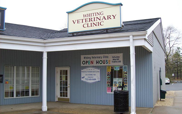 The outside of our clinic in Whiting, NJ