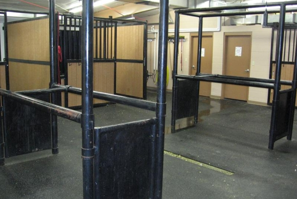 Equine Center Stocks and Stalls