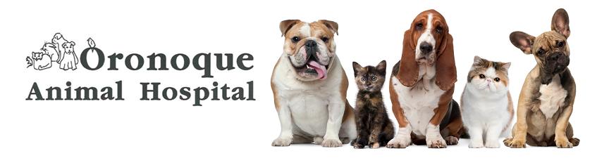 Oronoque Animal Hospital