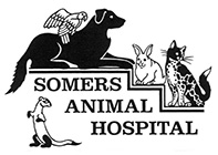 Somers Animal Hospital