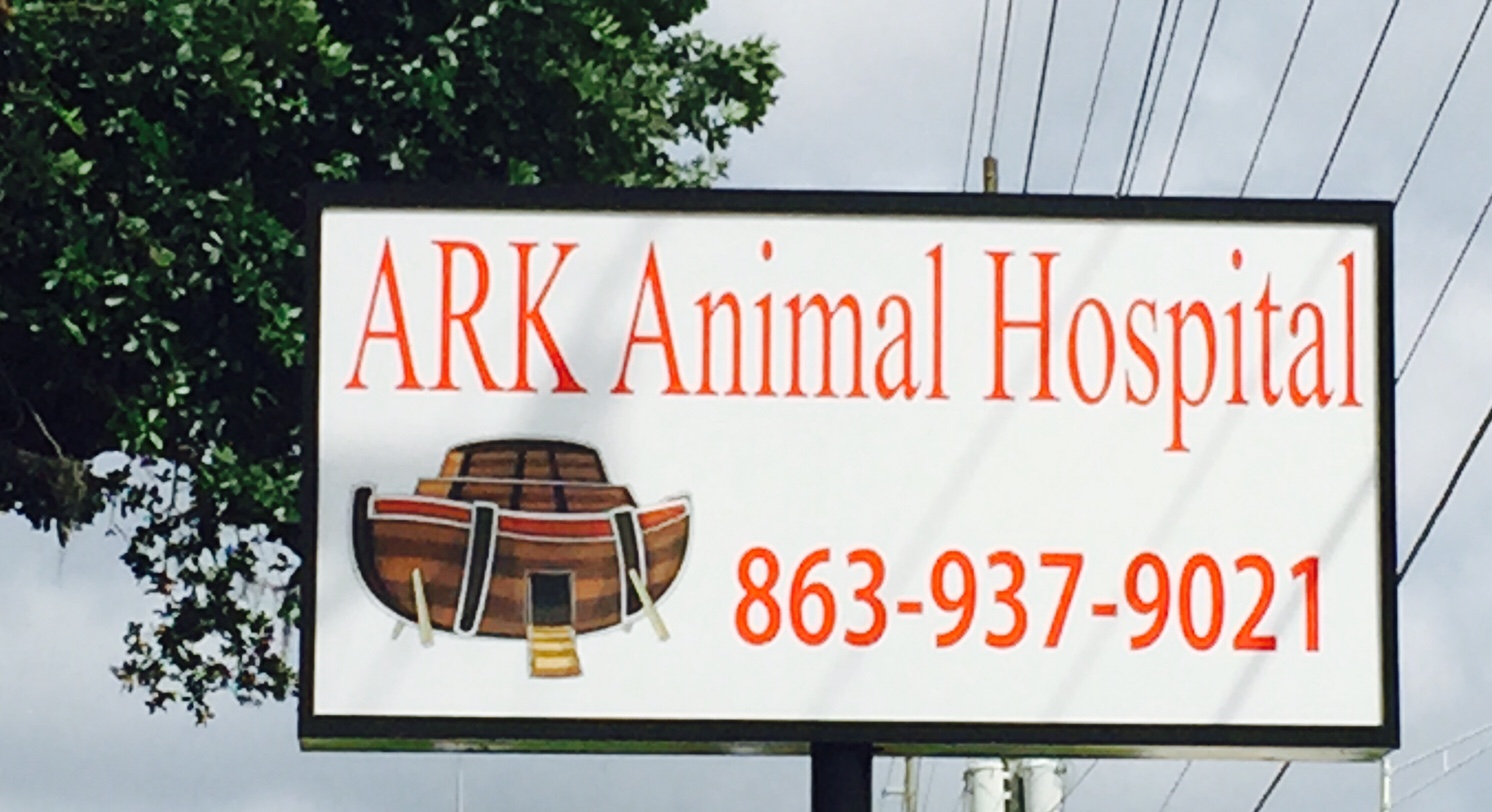Image of: Pet Welcome The Professional And Courteous Staff At Ark Animal Hospital Ark Animal Hospital Veterinarian