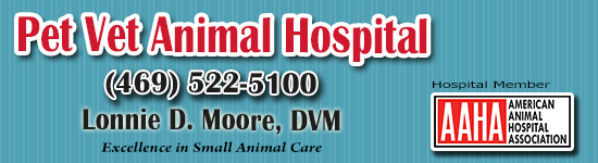 Pet Vet Hospital Dallas