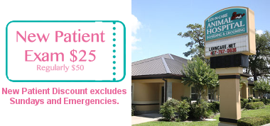 New Patient Exam $25!! (Excludes Sunday and Emergencies)