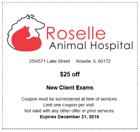 $25 off New Client Exams