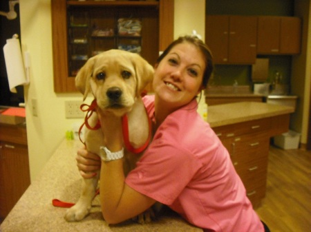 Danielle Harbeck, Veterinary Assistant