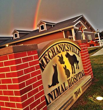 The outside of our animal hospital in Mechanicsville, VA