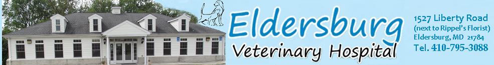 EVH Banner
