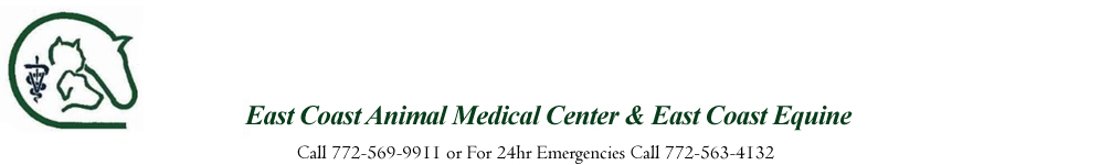 East Coast Animal Medical Center
