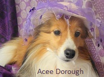 Acee Dorough