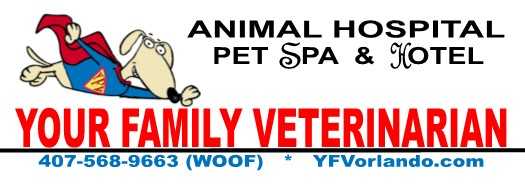 Your Family Veterinarian