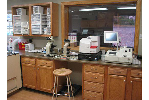 Treatment Area and Pharmacy