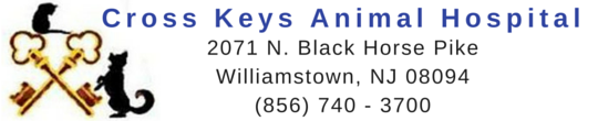 Cross Keys Animal Hospital