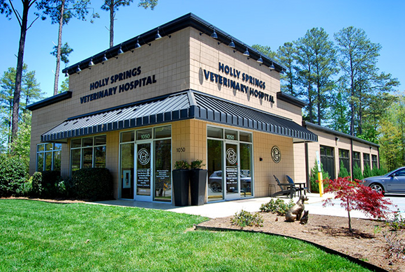 Holly Springs Veterinary Hospital