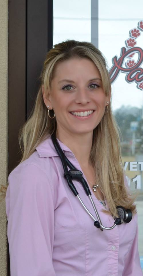 nsb kings bay paws and claws veterinary clinic
