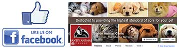 Sandy Animal Clinic Facebook