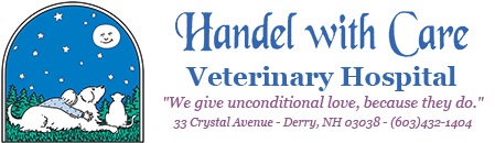 Handel with Care Veterinary Hospital logo. We give unconditional love, because they do. 33 Crystal Avenue, Derry, NH, 03038 (603) 432-1404