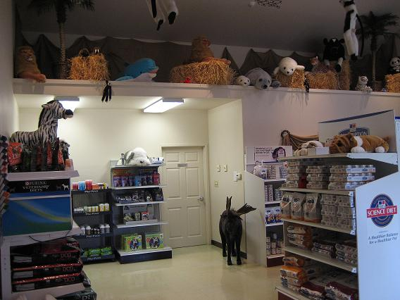 Retail Area and Animal Display
