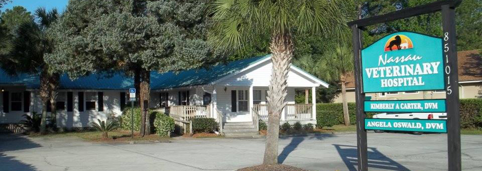 The outside of our veterinary hospital in Yulee, FL