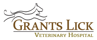 Grants Lick Veterinary Hospital