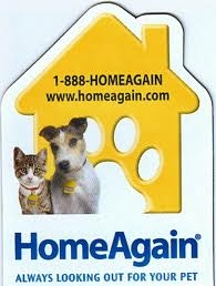 Home Again Microchipping