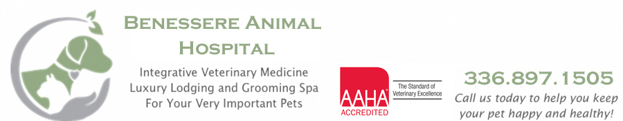 Benessere Animal Hospital