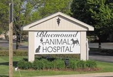 Bluemound Animal Hospital Sign