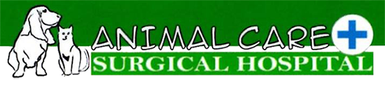 Animal Care & Surgical Hospital logo