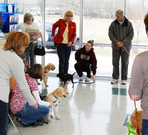 Puppy Class in the Clinic
