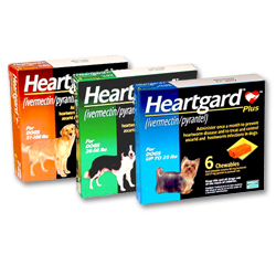 Heartgard product