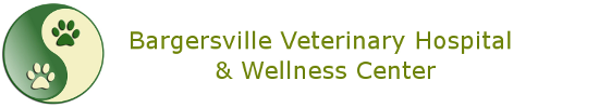 Bargersville Veterinary Hospital & Wellness Center