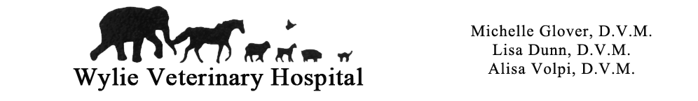 Wylie Veterinary masthead