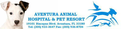 Aventura Animal Hospital & Pet Resort