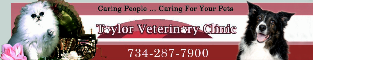 Taylor Veterinary Clinic