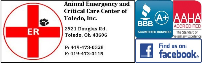 Animal Emergency & Critical Care