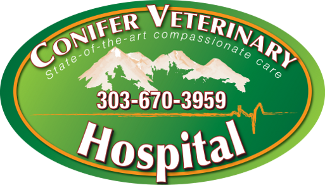 Conifer Veterinary Hospital