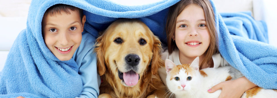 Dog and Cat with two kids